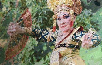 bali-arina